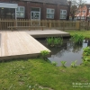 Pond Dipping Area