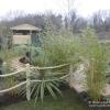 Planting Schemes