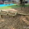 Fallen Log Climber